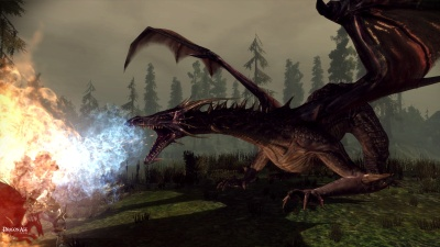 Dragon in Dragon Age
